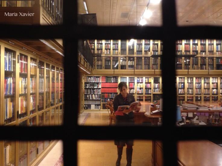 Biblioteca fotografía